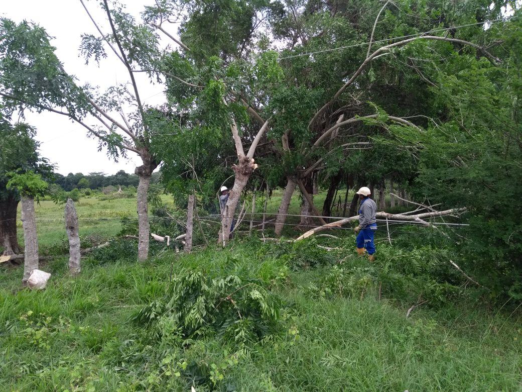 Superados daños eléctricos causados por vendaval en Córdoba